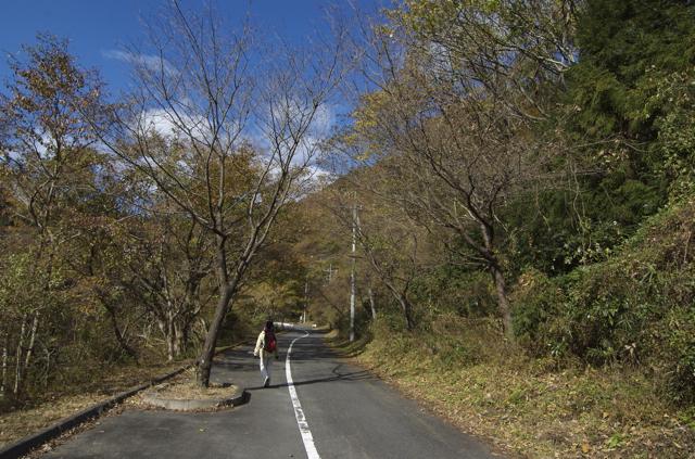 hananuki-1.jpg