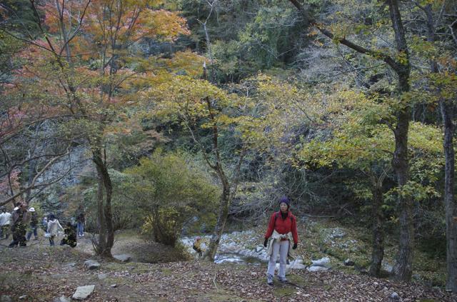 hananuki-3.jpg